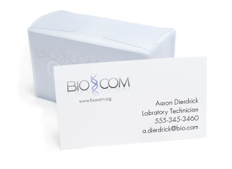 Marketing Materials Business Cards