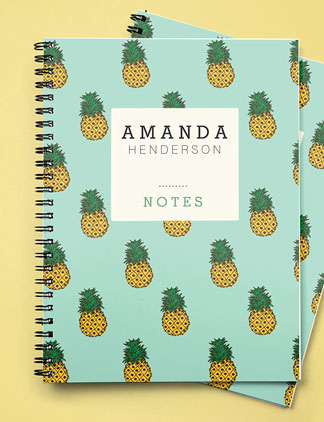 Summer Notebooks
